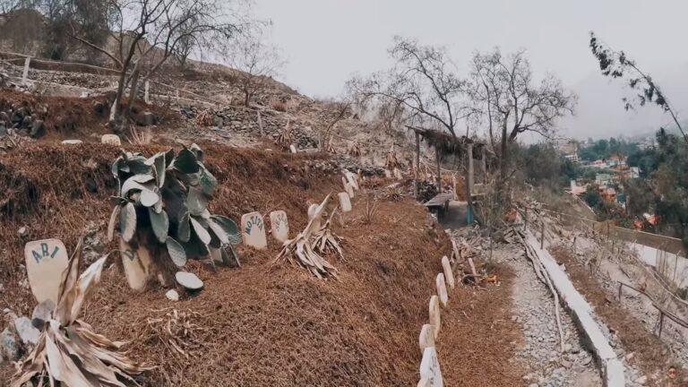 cementerio de mascotas chosica