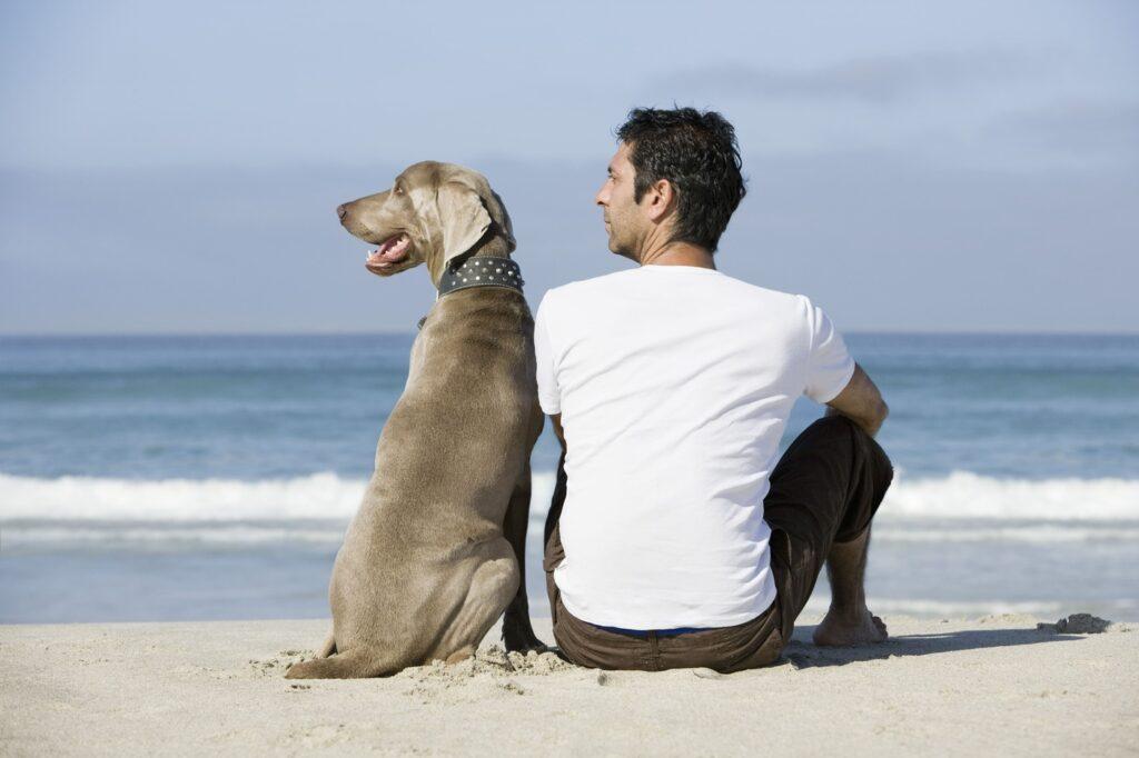 Hombre y su perro mirando el mar